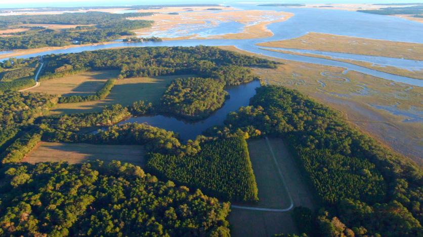 Point Farm Salt Marsh Mitigation Bank
